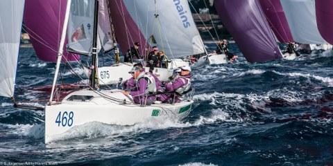 Segelboote bei einer Wettfahrt